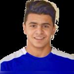 Hossam El Rayally